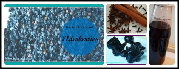 Elderberry Collage Loula Natural