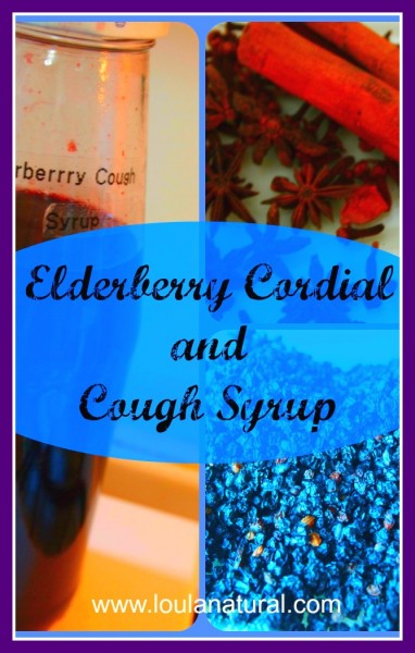 Elderberry Cordial and Cough Syrup Loula Natural pin