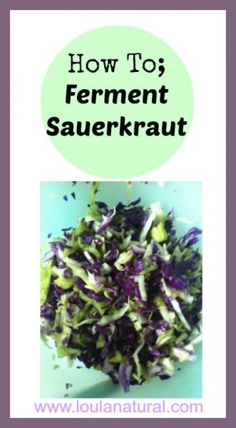 Ferment Sauerkraut Loula Natural