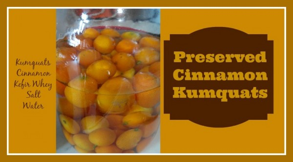 Preserved Cinnamon Kumquats Loula Natural