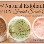 The Crunchy Moose Facial Scrubs