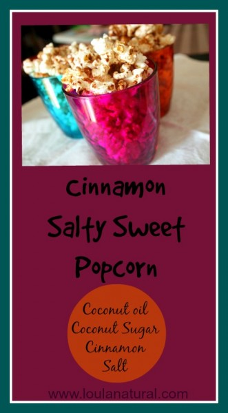Cinnamon Salty Sweet Popcorn Loula Natural pin