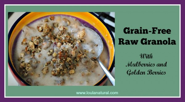Grain Free Raw Granola Loula Natural