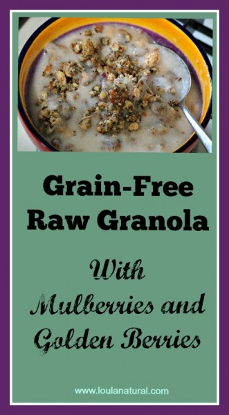Grain Free Raw Granola Loula Natural Pin
