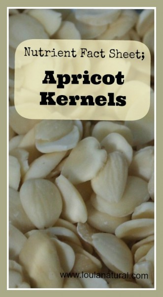 Nutrient Fact Sheet Apricot Kernels Loula Natural pin