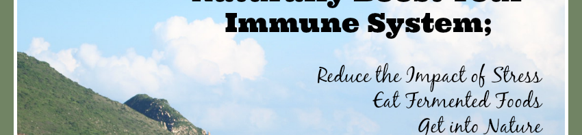 How do I naturally boost the immune system?