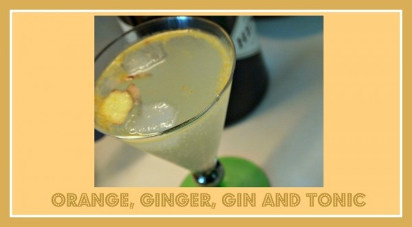 orange ginger gin and tonic Loula Natural