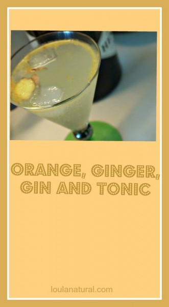orange ginger gin and tonic Loula Natural Pin