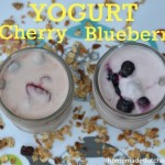 Blueberry Or Cherry-Yogurt Homemade Dutch Apple Pie