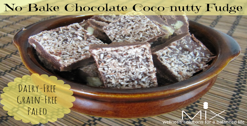 Chocolate Coconut Fudge Mix Wellness