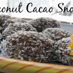 Coconut Cacao Snowballs Mix Wellness