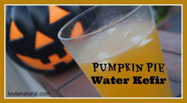 Pumpkin Pie Water Kefir Loula Natural fb